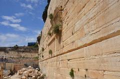 DBN_7885 (David_North) Tags: northholylands2018 israel jerusalem templemount