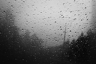 rainy season internal (2018)