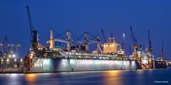 Dock 10 - 22041801 (Klaus Kehrls) Tags: hamburg hamburgerhafen docks industrie werft schiffe kräne elbe flüsse blauestunde nachtaufnahme