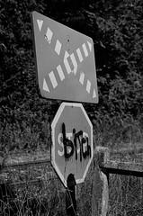 Stop bitching (tonic_witch) Tags: film noiretblanc blackandwhite contaxrx planart1450 kodaktx400