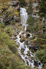 Waterfall near Chebisa - Thimphu District - Snowman Trek - Bhutan (PascalBo) Tags: nikon d500 asie asia southasia asiedusud drukyul drukgyalkhap bhutan bhoutan འབྲུག་ཡུལ། འབྲུག་རྒྱལ་ཁབ་ snowman trek trekking hike hiking lunana thimphu himalaya himalayas jigmedorjinationalpark waterfall chutedeau rivière river chebisa outdoor outdoors pascalboegli