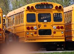 Freeman Bus Corp. #89 (ThoseGuys119) Tags: freemanbuscorp schoolbus watertownny thomasbuilt freightliner fs65 c2 saftliner yellowbumpers