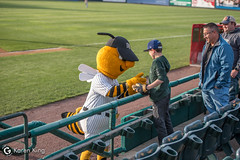 BeesvsRevs-4 (doublegsportsimages) Tags: newbritainbees york revolution baseball