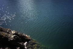 lake (sogesehen.) Tags: minoltaafc compactcamera filmphotography 135film agfaphoto iso200 colour blue lake reflection rocks landscape walensee kantonstgallen schweiz switzerland