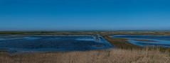 Nordsee Multipic (Merwin Goldschmidt) Tags: nordsee carolinensiel north sea northsea salzwiese salz wiese wangerooge salt marsh sun sailing sonne segeln wasser blue brown green