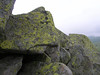 Витоша (Oleg Nomad) Tags: болгария софия витоша гора снег лес камни sofia bulgaria vitosha mount stones travel