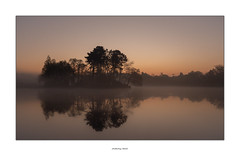 Morning reflection (AnthonyCNeill) Tags: sunrise park island lake mist misty morning silhouette sky trees pastel color colour soft mood serene calm tranquil english countryside landscape sonnenaufgang