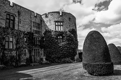 Chirk Castle (126/365) (Capturing The Negative) Tags: chirk chirkcastle castle wales wrexham building house blackandwhite bnw bw sunny sunnyday clouds canon canon650d fltofb