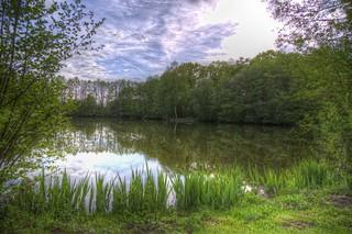 Lakeside Spring