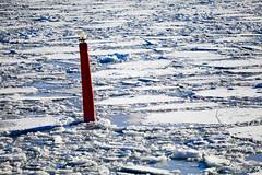 Time to get ready for the summer!!! (Anders Sellin) Tags: finnhamn skärgård sverige sweden vinter winter archipelago baltic cold ice is isbrytning kallt sea stockholm östersjön