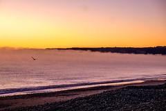 ºº SmOke on the waTer ºº (m+m+t) Tags: dscf55851 mmt meredithbibersteindesign newzealand northisland nature dawn sunrise sea ocean beach coast sky sun fujixt1 fujixseries fujimirrorless 1855mm van campervan vantastic hawkesbay