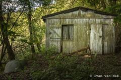 Cabin in the woods (Ivan van Nek) Tags: heringenwerra hessen deutschland heringen nikon d7200 nikond7200 germany allemagne duitsland bos forest vakantiehuisje recreatiewoning abandoned decaying ruraldecay