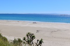 610_7711 (Lox Pix) Tags: australia loxpix queensland qld northstradbrokeisland beach ocean sand water ferry watertaxi flower carferry bird boat surf surfer landscape reef rock cliff loxworx loxwerx l0xpix