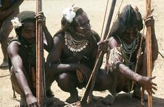 NG-D4--003b (Stichting Papua Erfgoed) Tags: papua stichtingpapuaerfgoed pace papuaheritagefoundation nederlandsnieuwguinea irianjaya irianbarat newguinea voormalignederlandsnieuwguinea