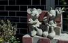 img089 (kaz_Pinguist) Tags: asahiflexiia film filmcamera fujicolor100 saitama 20180520