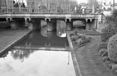 La Têt (carles.ml) Tags: olympus om1 kodak tmax400 bw film 35mm perpignan
