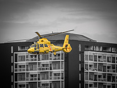 Helikopter Loodswezen - Nieuwe Maas - Port of Rotterdam (Frans Berkelaar) Tags: rotterdam zuidholland nederland nl loodswezen helikopter helicopter eurocopter portofrotterdam sar searchandrescuesar searchandrescue leicadg100400f4063 nieuwemaas 00nhu worldportdaysrotterdam2016 wereldhavendagenrotterdam2016