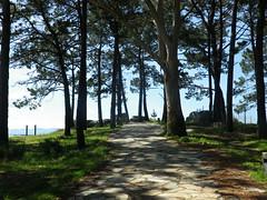De paseo por la playa de A Illa (2) (Los colores del Barbanza) Tags: playa paseo cabio pobra caramiñal barbanza coruña galicia españa