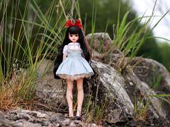 The wall (pure_embers) Tags: pure embers doll dolls uk pureembers photography laura england fashion atomaru maru dorandoran doran mary ara cute chu things dress pretty wall outside portrait korean