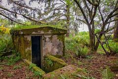 Hidden (KPortin) Tags: abandonedbuilding moss ferns military forest fortstevensstatepark
