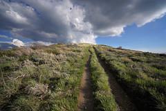 DSC00885 (kyleddsn) Tags: hiking utah ogden spring