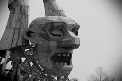 Crazy-Art, Morton Arboretum. 2 (EOS) (Mega-Magpie) Tags: canon eos 60d outdoors the morton arboretum art work guy face rock wood lisle il illinois usa america bw black white mono monochrome