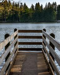 Lonely Pier (Matthew Warner) Tags: 2018 april camas clarkcounty d7100 lacamaslakeregionalpark matthewwarner nikkor nikon nikond7100 nikonartists outdoors roundlake spring unitedstates washington us
