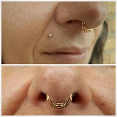 "septum monroe gold • <a style=""font-size:0.8em;"" href=""http://www.flickr.com/photos/122258963@N04/40788871005/"" target=""_blank"">View on Flickr</a>"