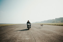 there is no telling how many miles you will have to run while chasing a dream <3 greyhound love <3 (Spy-glass) Tags: greyhound nikkoraf28mmf14d nikkor nikon wideangle bike racing dog motor vintage vintagelens vintageprime