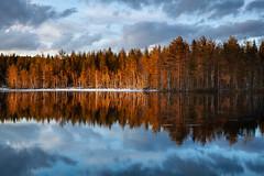 The Riverside (Lars Øverbø) Tags: river water tree forest sky cloud snow ice evening sunset reflection canoneos5dmarkii canonef24105mmf4lisusm leendgrad leepolarizer nannestad norge norway