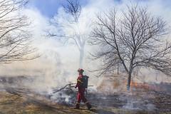Burn Notice (Nicoli OZ Mathews) Tags: fire smoke toronto highpark trees grass flame flickr explore ontario man people blue white canada bushfire canon shadow sigma fireman