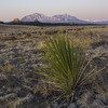 Spanish Peaks Square (Aaron Spong Fine Art) Tags: spanish peaks colorado mountains yucca plant sunrise walsenburg cuchara cordova la veta