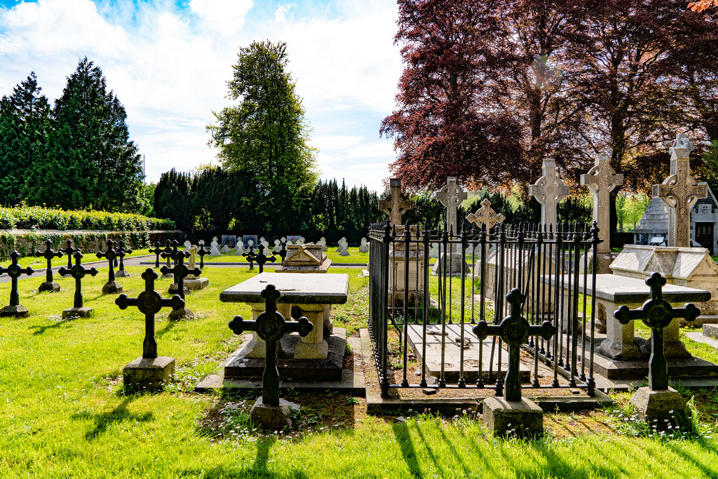 ST. PATRICK'S COLLEGE CEMETERY IN MAYNOOTH [SONY A7RIII IN FULL-FRAME MODE]-139572