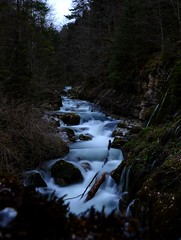 Down the river (Carandoom) Tags: down river water long exposure waterfall forest