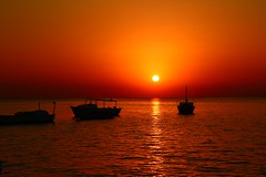 the early bird catch the worm (werner boehm *) Tags: wernerboehm sunrise egypt redsea sonnenaufgang