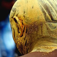Le tigre... (Sabine-Barras) Tags: religion procession ritual personnes détail detail tradition rituel réunion cavadee kavadi tamil tamoule reportage yellow jaune people