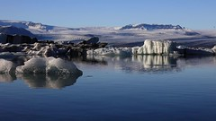 Jokulsarlon Icebergs and seal video (MelvinNicholsonPhotography) Tags: jokulsarlon jokulsarlonicelagoon iceland icebergs lagoon seal wildlife ice autumn glaciers bluesky calming relaxing canon5dmk4
