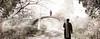 Bridge sun-5 (Poli Maurizio) Tags: sony sonydsch200 disegno art abstract painting sculpture museum gallery virtual artist master famous canvas painter collection drawing impressionism naturalism renaissance expressionism realism baroque sketch garden portrait autumn flower light nature sky spring summer indoor travel water woman yellow blue black white color movement figure macro photo object fine unlimited still life mattepainting fantasy fantastic facebook twitter linkedin pinterest instagram tumblr outdoor atmosferic watercolor technique surrealism digitalart 3dweddingpartyfamilytravelfriendsjapanvacationlondonbeachcaliforniabirthdaytripnycsummernatureitalyfrancemeparisartflowerssanfranciscoeuropechinaflowernewyorkwaterpeoplemusiccameraphone 3daustraliachristmasusaskygermanynewcanadanightcatholidayparkbwdogfoodsnowbabysunsetcitychicagospaintaiwanjulybluetokyoenglandmexicowinterportraitgreenred 3dpolimaurizioartworkredfunindiaarchitecturegardenmacrospringthailandukseattlefestivalconcertcanonhouseberlinhawaiistreetlakezoofloridajunemaywhitevancouverkidstreecloudstorontobarcelonageotaggedhome 3dbwbwdigitalseadaytexasscotlandcarlighthalloweencampingchurchanimalstreeswashingtonrivernikonaprilbostongirlirelandgraffitiamsterdamrocklandscapeblackandwhitecatsnewyorkcitysanromeroadtripurbanhoneymoonocean 3dwatercolorsnewzealandmarchblackmuseumyorkhikingislandmountainsyellowsydneysunhongkongshowgraduationcolorfilmmountainanimallosangelesschoolmoblogphotodogs 3dartdesigndisegnosiciliacalabriabasilicatacampaniamarcheabruzzomoliselaziotoscanaemiliaromagnalombardiavenetofriuliveneziagiuliapiemontevalledaostaliguriatrentinoaltoadigepuglia 3dlandscapepaesaggiolunasolemarenuvolecittàtramontoalbamontagnecollinenebbialuceautomobilearredamentointerniesterninaturamortacieloragazzadonnauomobambinofruttabarca 3dcanigattirinascimentomodelbarocconaturalismomattepaintingfuturismoastrattismocubismosurrealismorealismoiperealismoclassicismorococomanierismoromanticismoimpressionismogiocovirtua
