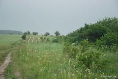 Волинське поле InterNetri Ukraine 057