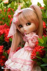 Annabelle, Pullip Tiphona (Mundo Ara) Tags: annabelle pullip tiphona doll groove