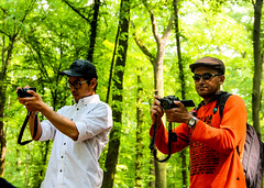 Act of photographers (A. Yousuf Kurniawan) Tags: photographer decisivemoment streetphotography tree colourstreetphotography colourful hobby people hat green duo