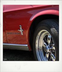 Jus_Polaroids04 (reinhard_srb) Tags: artwork polaroid automarke automobil oldtimer ausstellung logo farbe fahrzeug historisch detail karosserie blech lack design spiegelung glanz sammler ford mustang rot felge emblem pfern reifen