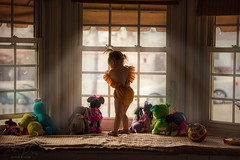 Waiting ({jessica drossin}) Tags: jessicadrossin child toddler windows natural light indoor toys stuffed animals rays wwwjessicadrossincom