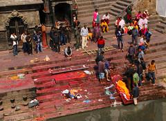 2018-03-24 (Giåm) Tags: kathmandu kathmandou katmandou katmandu काठमाडौं pashupatinath pashupatinathtemple पशुपतिनाथमन्दिर bagmati kathmanduvalley nepal नेपाल giåm guillaumebavière