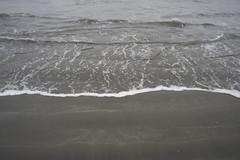 DSC08633 (GusTheArtist) Tags: yescoast scrp sonomacounty regionalparks pacificcoast doran doranbeach ocean beach
