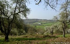 6023 King Edward II (Lewis Maddox) Tags: 6023 king edward ii svr severn valley railway gwr spring shropshire river fowers green daniels mill landscape hills trees forest