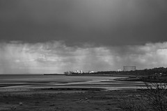 Lauriston and Crammond with Alastair April 2018 (87 of 126) (Philip Gillespie) Tags: crammond lauriston castle keep gardens park green blue red yellow orange colour color mono monochrome black white sea seascape landscape sky clouds drama dramatic walkway path flowers leaves trees april spring defences canon 5dsr people rust metal grafitti man dog petals bluebells dafodils holly blossom pond forth water wet rain sun reflections architecture mirrors gold japan garden sunlight scotland