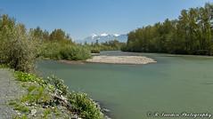 Vedder River (R. Sawdon Photography) Tags: sardis chilliwack vedderriver rotarytrail fraservalley water bike bikepath shoreline trees britishcolumbia