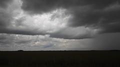 Marl prairie, Everglades, Florida (lotosleo) Tags: florida fl landscape marlprairie miamidade monochrome everglades evergladesnationalpark outdoor crossamerica2018 homestead
