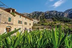 Mallorca20180415-08320 (franky1st) Tags: spanien mallorca palma insel travel spring balearen urlaub reise